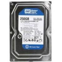 Ổ cứng Western Digital Blue 250GB SATA